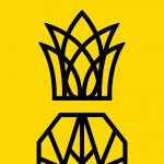 ananas gym Krefeld