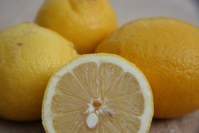 Zitrone, frisch